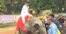 মৌলভীবাজারে হাতির পিঠে চড়ে এলেন মনোনয়ন পত্র জমা দিতে